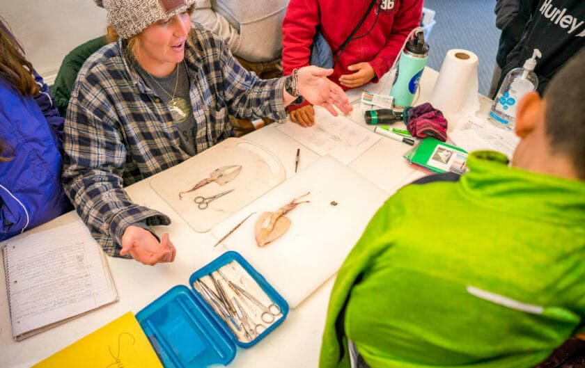 Pali instructor teaches students how to dissect squid