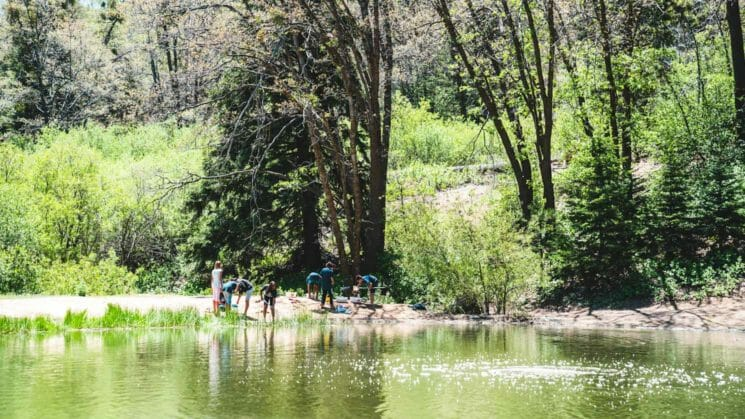 Group of students stands on pond bank for ecology class