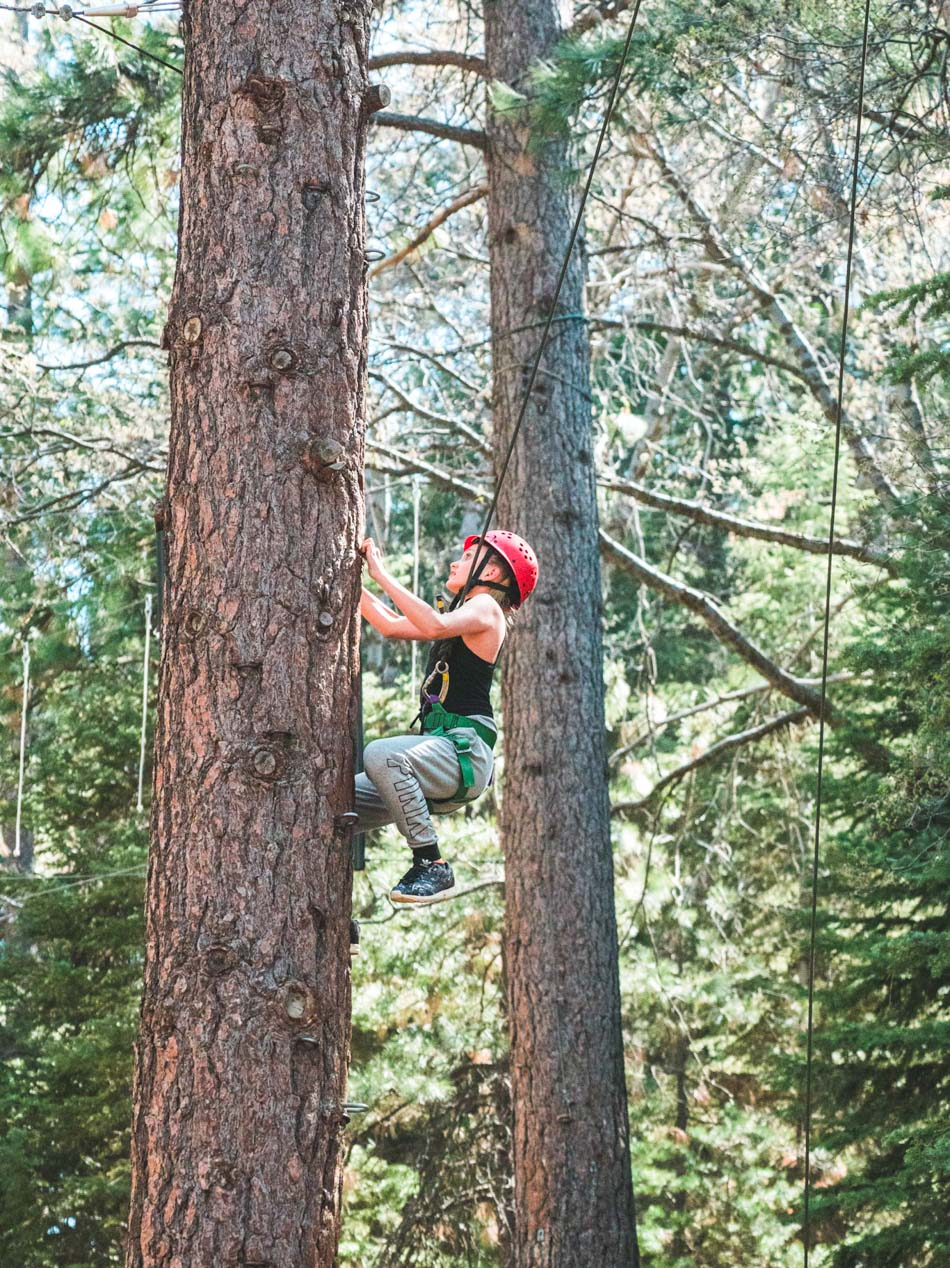 Pali Institute student in red helmet climbs tree